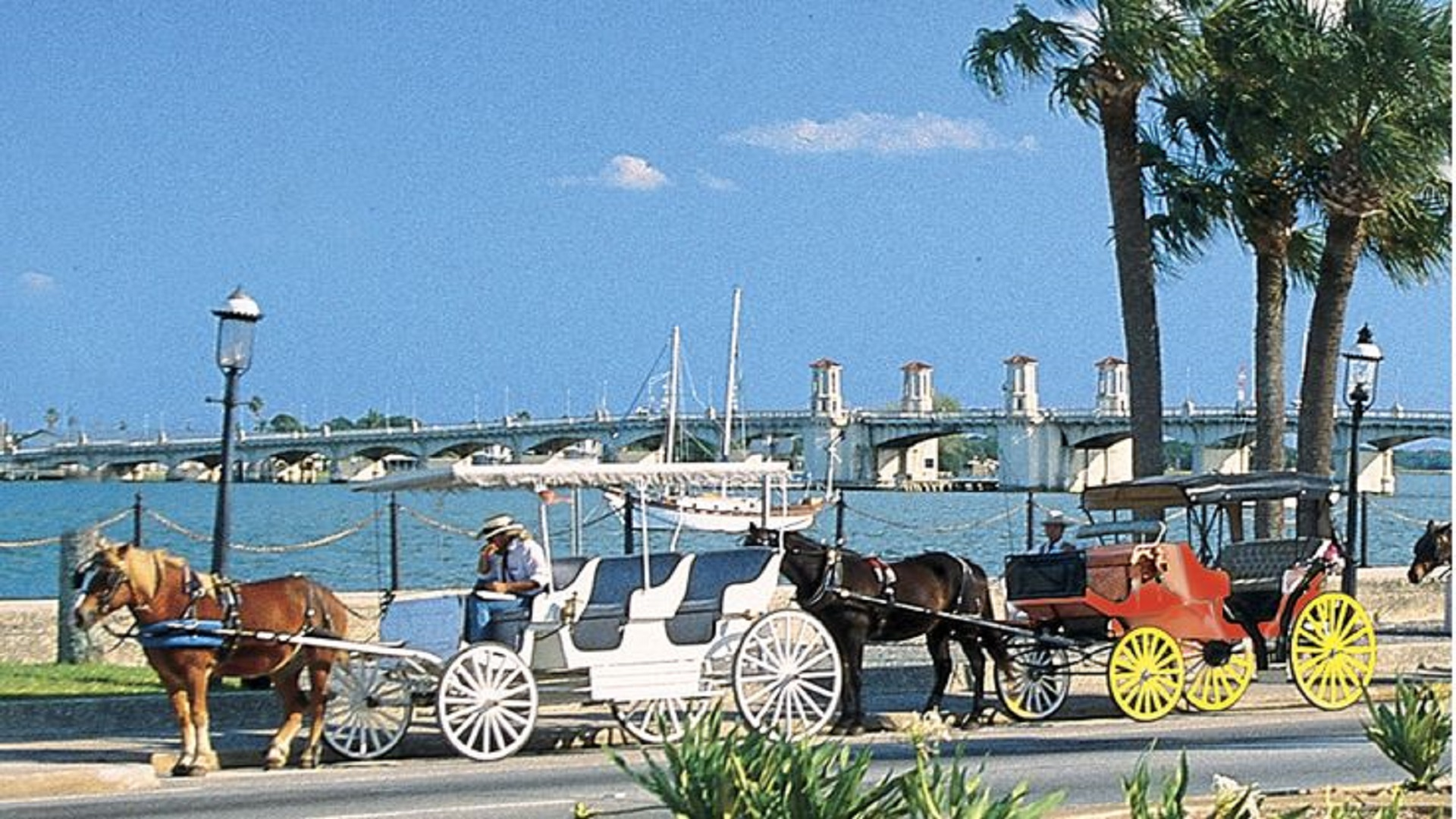 Horse & Carriage Rides